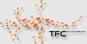 TFC-Salamander Logo
